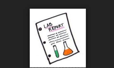 How to write a brief lab report